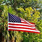 American Flag by Christine Demaray-Brown