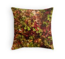 Virginia, up against the Wall Throw Pillow