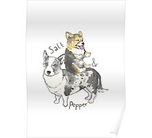 Salt n Pepper Poster