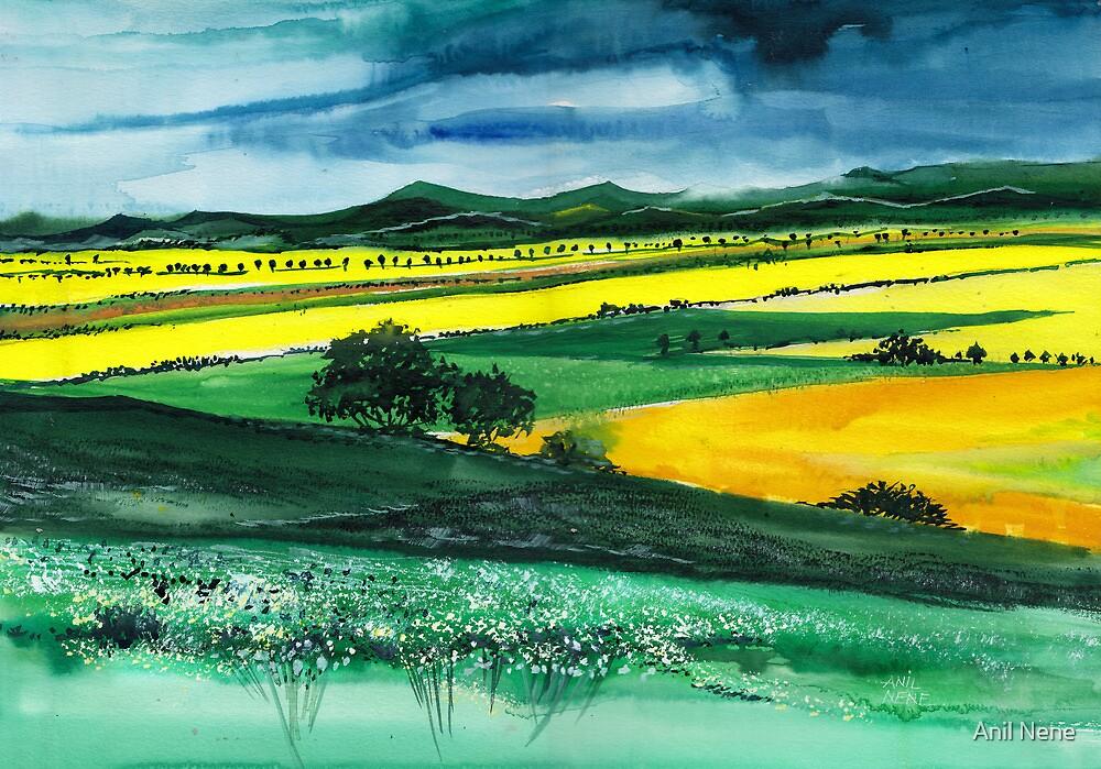 Farmland 1 by Anil Nene