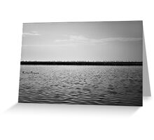 Cormorants at Sunrise Greeting Card