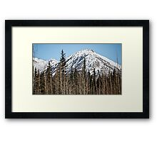 Raw Beauty - wow  Framed Print