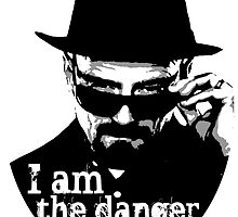 Heisenberg is the danger by Immortalsushi