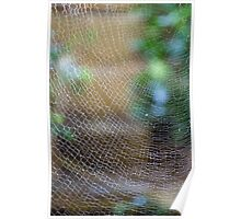 Golden Silk Orb Weaver's Web Design Magic Poster