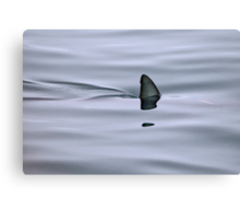 Silent and Deadly Canvas Print
