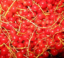 red currant by artMoni