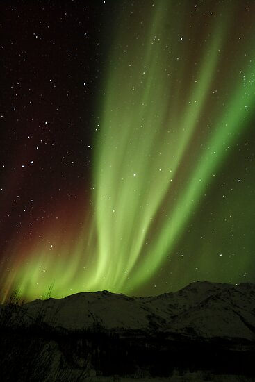 The Northern Light , Alaska USA.( Sold 3 image YAY )  by Nina  Matthews Photography