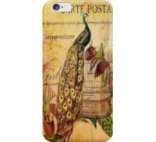peacock orchid floral vintage botanical art iPhone Case/Skin