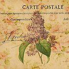 purple lilac vintage floral paris botanical art by lfang77