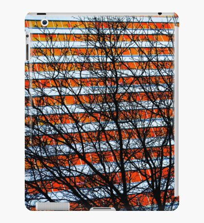 Stripe Resistance iPad Case/Skin