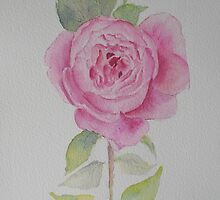 Rose toujours by Beatrice Cloake