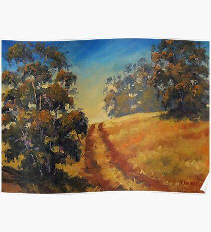 Eucalyptus Impressions Poster