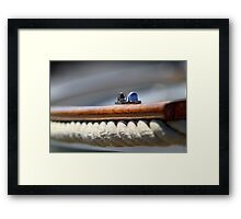 The fairlead Framed Print