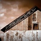 This Ol' Barn Sees Storms Aplenty by paintingsheep