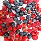 iPad-Berries by Christine Wilson