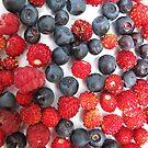 iPhone-Berries by Christine Wilson