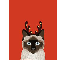Reindeer Costume for cat cute gift idea for office party cat person in your life Photographic Print