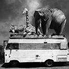 Barnum and Baileys Fabulous Road Trip Vacation Across The USA Circa 2013 5D22705 black and white with text by Wingsdomain Art and Photography