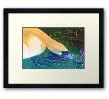Swan change up Framed Print