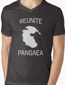 Reunite Pangaea Mens V-Neck T-Shirt