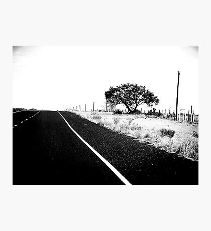 On The Road In Marfa Photographic Print