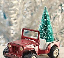 Tonka Christmas by Hilary Walker