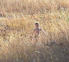 Field Boy by Christine Demaray-Brown