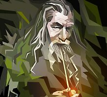Lord of the Rings - Gandalf by djcedrics