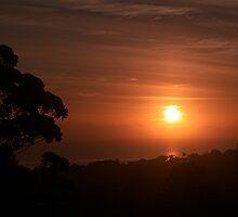 De sun come up in de morning........................! by Roy  Massicks