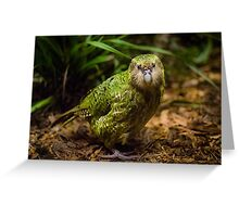 Sirocco the Kakapo Greeting Card