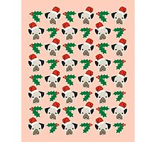 Pug misteltoe and holly cute gift for dog person pug owner Photographic Print
