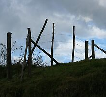 Wood and Barbed Wire Fence on a Hill by rhamm