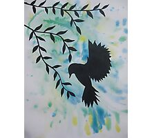 blue green yellow bird watercolor and acrylic modern art Photographic Print