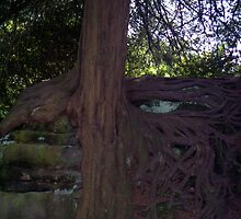 Trees 9 by Solar-Encoded