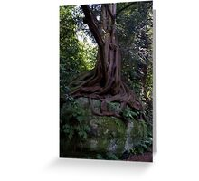Trees 10 Greeting Card