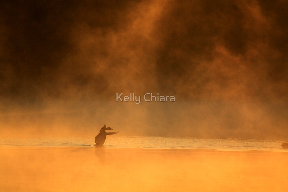 Goose Dance on Water by Kelly Chiara