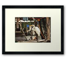 Rope, chains, nets and the red line Framed Print