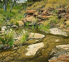 Tupul waterhole by Roger Neal