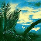 Tropical Tri-tone by Ellen Cotton