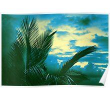 Tropical Tri-tone Poster