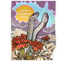 the rites of spring. (mating snakes) Poster