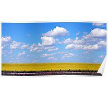Pretty Prairie Poster