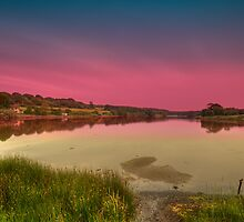 Old Mill Pond by manateevoyager