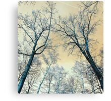 Trees Infrared Nature Canvas Print