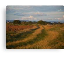 Tracks across Romney Marsh at dawn Canvas Print