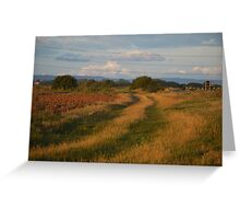 Tracks across Romney Marsh at dawn Greeting Card