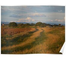 Tracks across Romney Marsh at dawn Poster