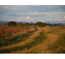 Tracks across Romney Marsh at dawn Photographic Print