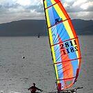 Largs Catamaran by George Crawford
