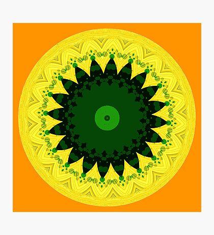 Circle of Patterns!  Photographic Print